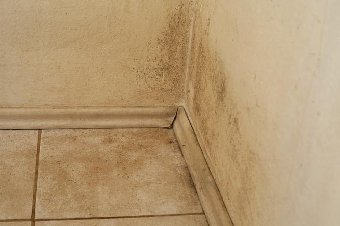 Cómo impermeabilizar las paredes del sótano